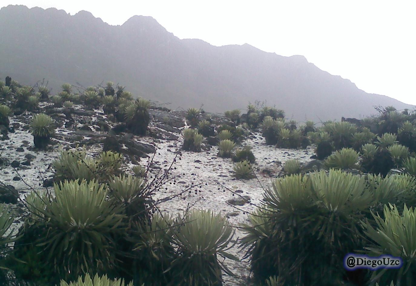 Nevada en Travesía por la Sierra La Culata