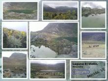 Laguna El Víolin en Micarache (Gavidía) #ExplorandoRutasEnMéridaVE