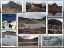 Laguna El Parche, Las Piñuelas