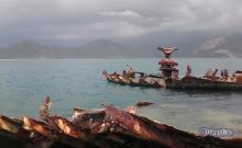 Antigüo Naufragio en la Isla Larga, en el Parque Nacional San Estebán